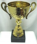 GOLD METAL OPEN TROPHY