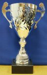 SILVER METAL OPEN TROPHY